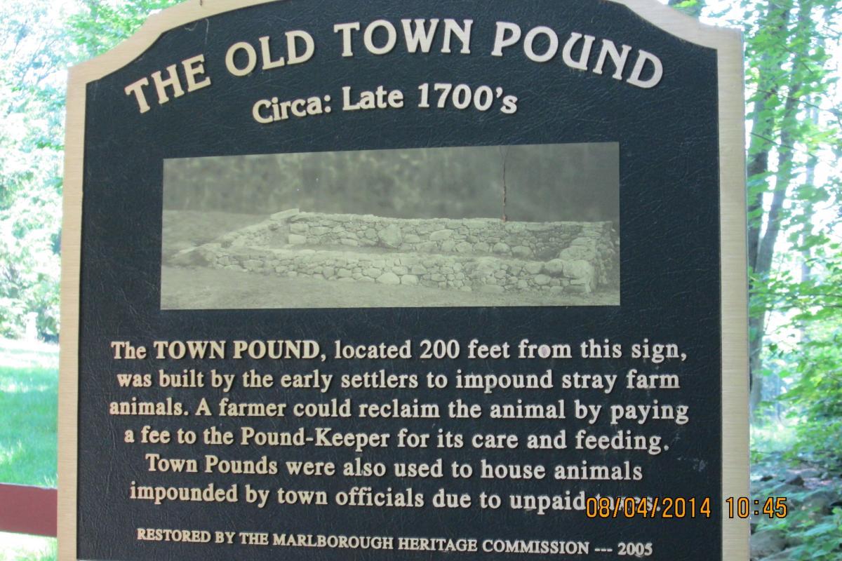 Town Pond Plaque